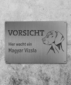 Hundeschild Magyar Vizsla